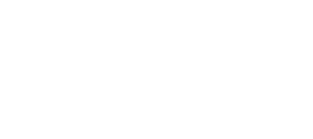 Barr Group Software Experts